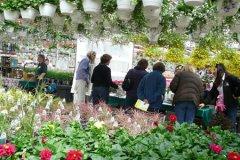 schaefers-gardens-openhouse-042812-geraldineclark-(13).jpg